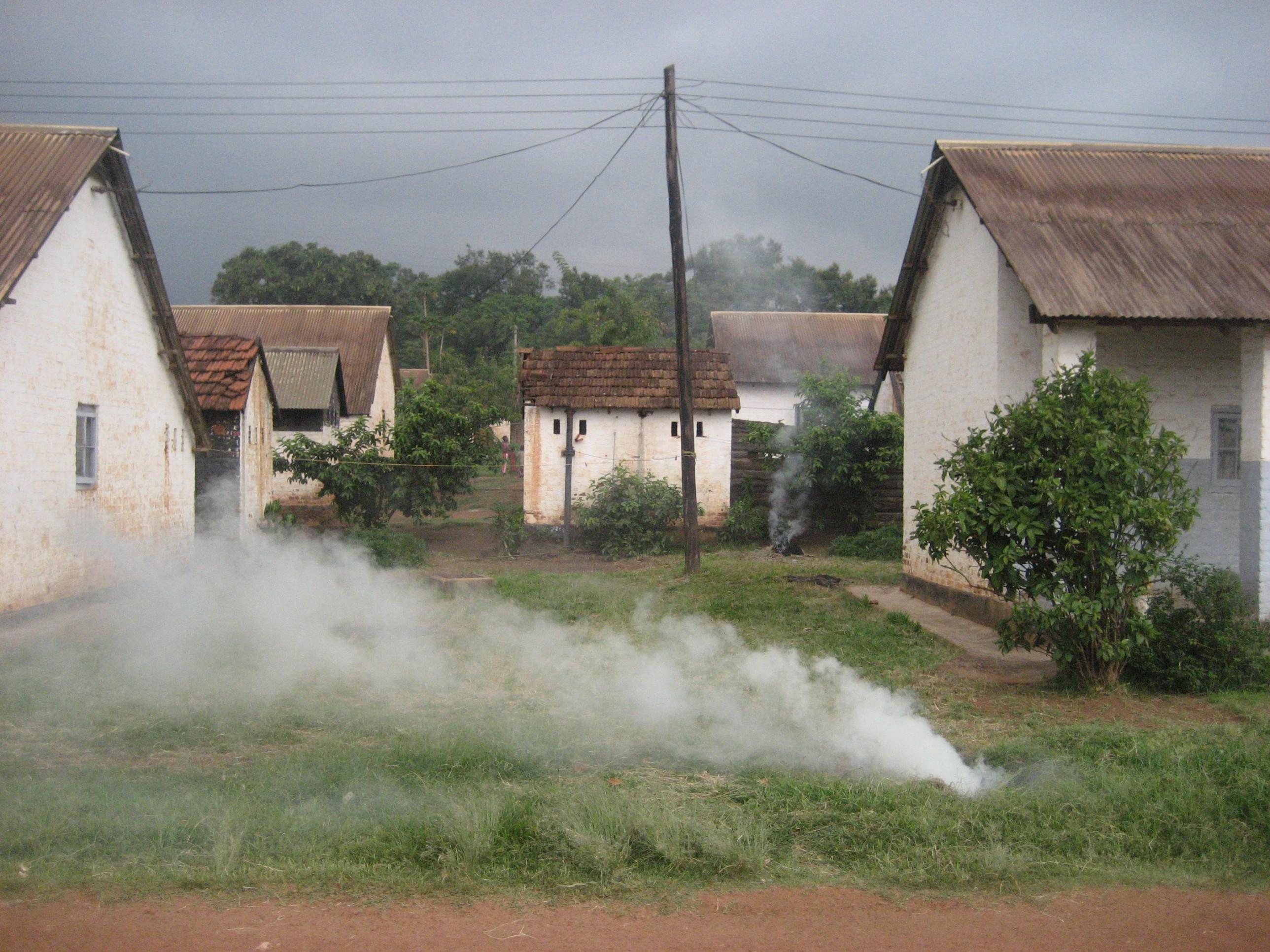 malawian-smoke.jpg