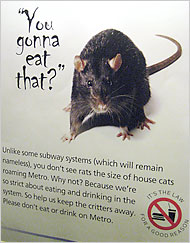 ratposter.jpg